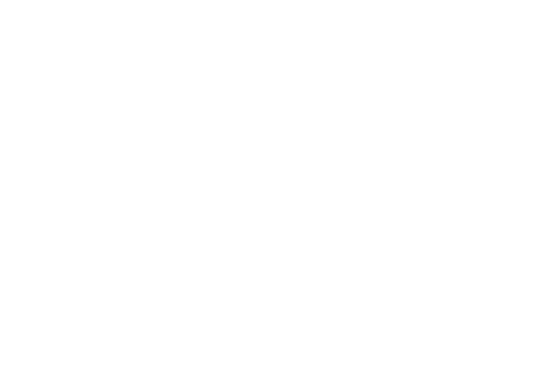 attract-icon2